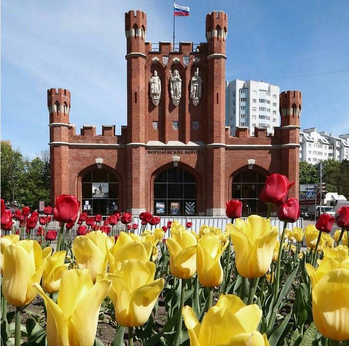 Туры в Калининград из Санкт Питербурга